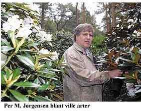 john bror skoglund